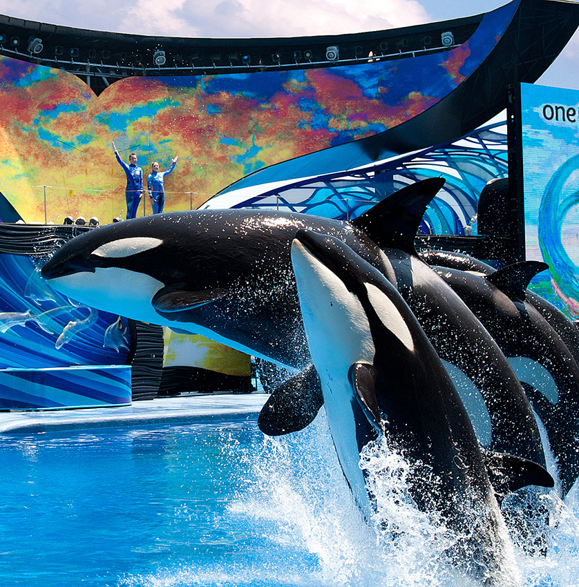SeaWorld Vacation Package Wonder And Thrill. Limited Time - 3rd Night Free, Plus Priority Entry