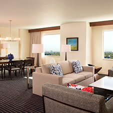 Treat yourself to a large suite with a living parlor, queen-sized sofa sleeper, LCD HDTV, dining table with eight chairs and two lounge chairs